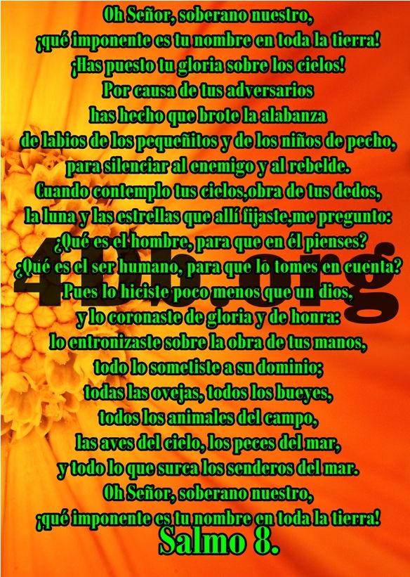 Versículos Cristianos Frases bíblicos para Jóvenes